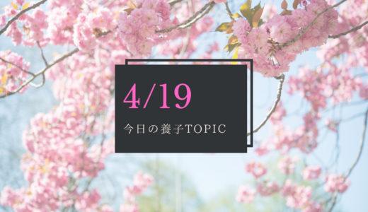 4月19日 特別養子縁組のキホン